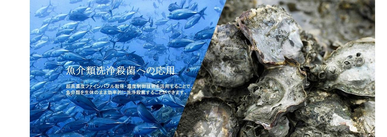 魚介類洗浄殺菌への応用
