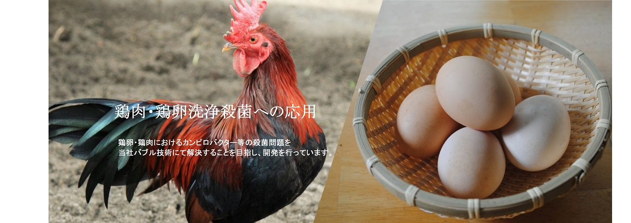 鶏肉・鶏卵洗浄殺菌への応用